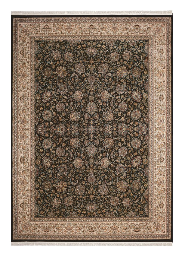 Catarina Brown/Navy Area Rug Rug Size: Rectangle 7'10