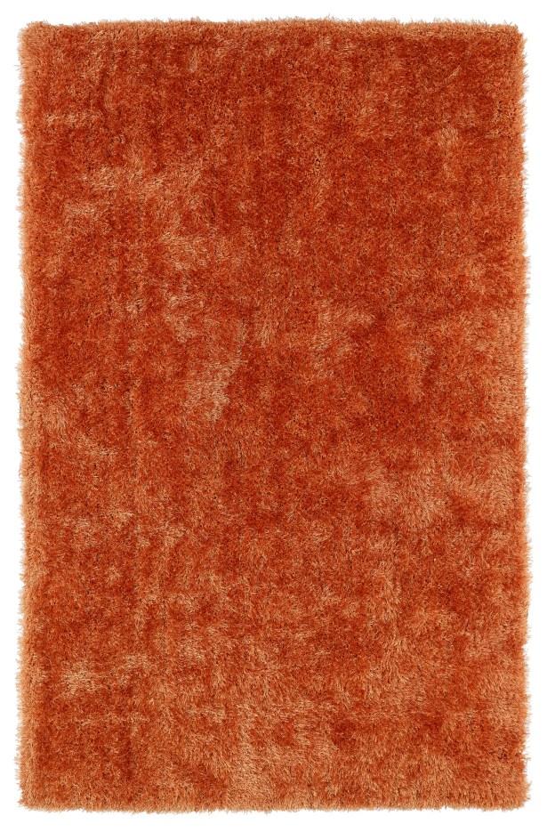 Caine Orange Area Rug Rug Size: Rectangle 9' x 12'