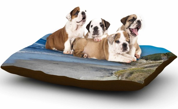 Nick Nareshni 'Swamis Beach Coast' Coastal Dog Pillow with Fleece Cozy Top