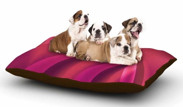 Fotios Pavlopoulos 'Petals in Pink' Magenta Dog Pillow with Fleece Cozy Top