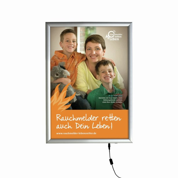 Smart LED Poster Box Color: Silver, Size: 11' x 17'