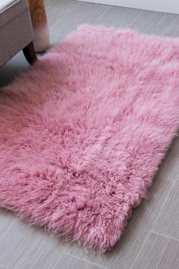 Paulornette Wool Pink Area Rug