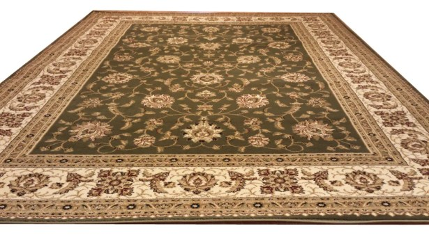 Green Area Rug Rug Size: Rectangle 10' x 13'