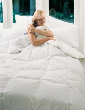 Splendor Lightweight Down Comforter Size: Twin