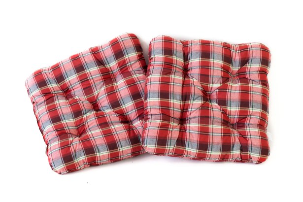 Indoor/Outdoor/Indoor Furniture Alma Seat Cushion (Set of 2)