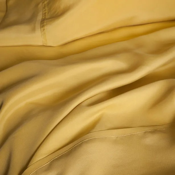 Matte Silk Pillow Case Color: Eggplant, Size: King/California King