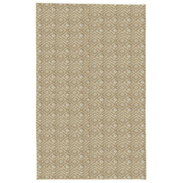 Palmyre Spice Area Rug Rug Size: Runner 2'6