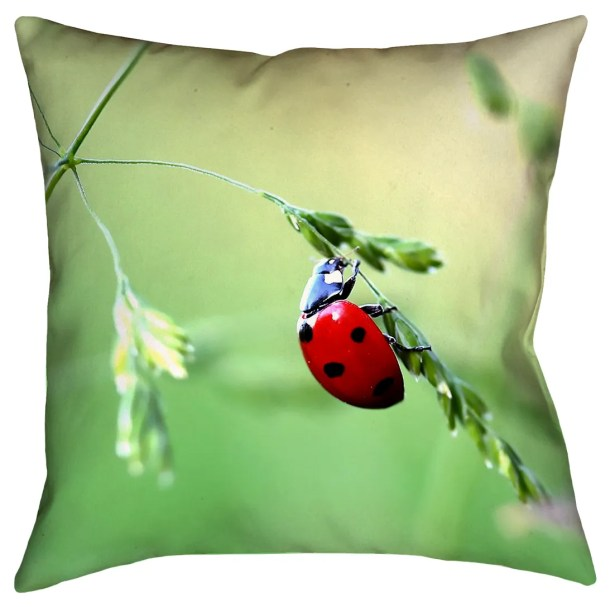 Duriel Square Outdoor Throw Pillow Size: 20