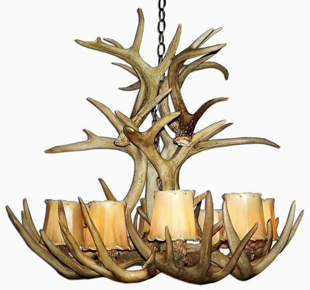 Doliya Antler Whitetail Cascade 9-Light We have associated to option Chandelier Shade Color: Rawhide, Finish: Rustic Bronze/Natural Brown, Shade Included: Yes