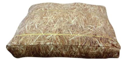 Rectangle Hay Dog Pillow Size: Large (36