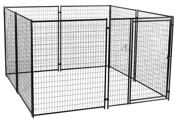 Alina? Welded Wire Yard Kennel Size: 6' H x 10' W x 10' L