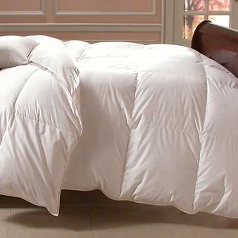 Bernina Midweight Down Comforter Size: Oversized King