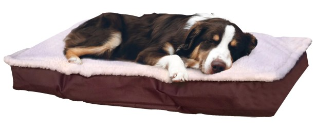 Blossom Deluxe Outdoor Pillow Dog Bed Color: Espresso, Size: X-Large (4.5