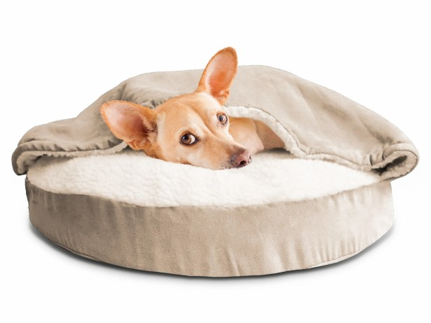 Fern Snuggery Hooded Dog Bed Color: Cream, Size: 35
