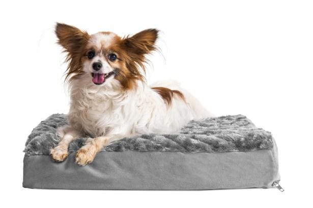Ernie Ultra Plush Deluxe Ortho Pet Bed Size: Medium (30