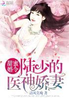 甜蜜婚令:陸少的醫神嬌妻(清風莫晚)/(黃金屋/伊利)微風小說網