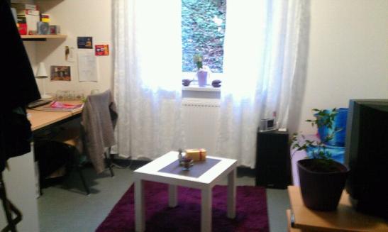 Apartment im Studentenwohnheim 5 Min zur Uni  1ZimmerWohnung in MainzHartenberg