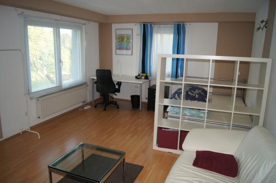 kleine wohnung modern und funktionell einrichten 1 zimmer ... - Ideen 1 Zimmer Wohnung