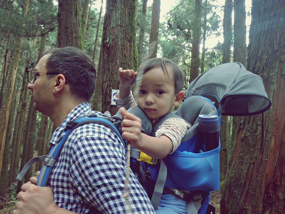 二寶14W。孕婦健行特富野古道的森林浴