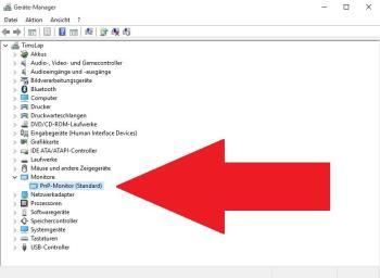 Geräte-Manager: Monitor aktivieren