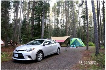 加拿大露營   地松鼠就在帳篷前的野生動物園營地。Lake Louise Campground