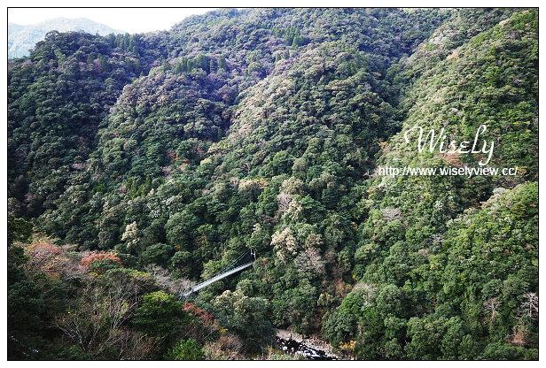 【旅行】日本。宮崎縣:綾之照葉大吊橋@於48層樓的高空中漫步體驗森林浴 – WISELY's 拍拍照寫寫字