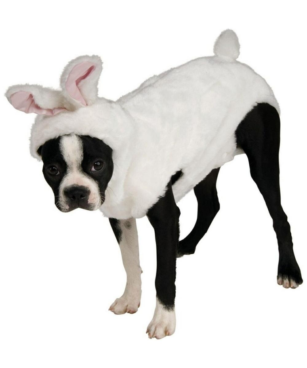 Bunny Dog Costume