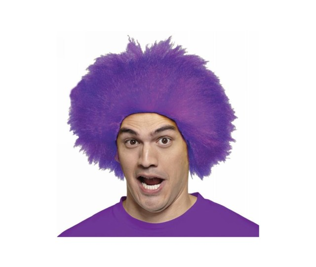 Fun Purple Adult Wig