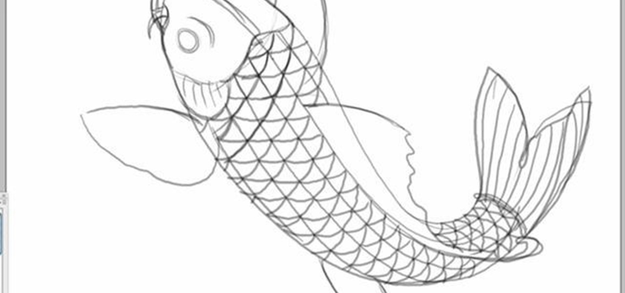 How to Draw a koi fish in Photoshop « Photoshop
