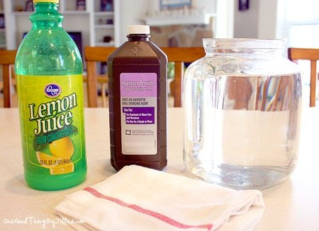 Spring Cleaning Carpet 2 Ways To Diy Clean Mama