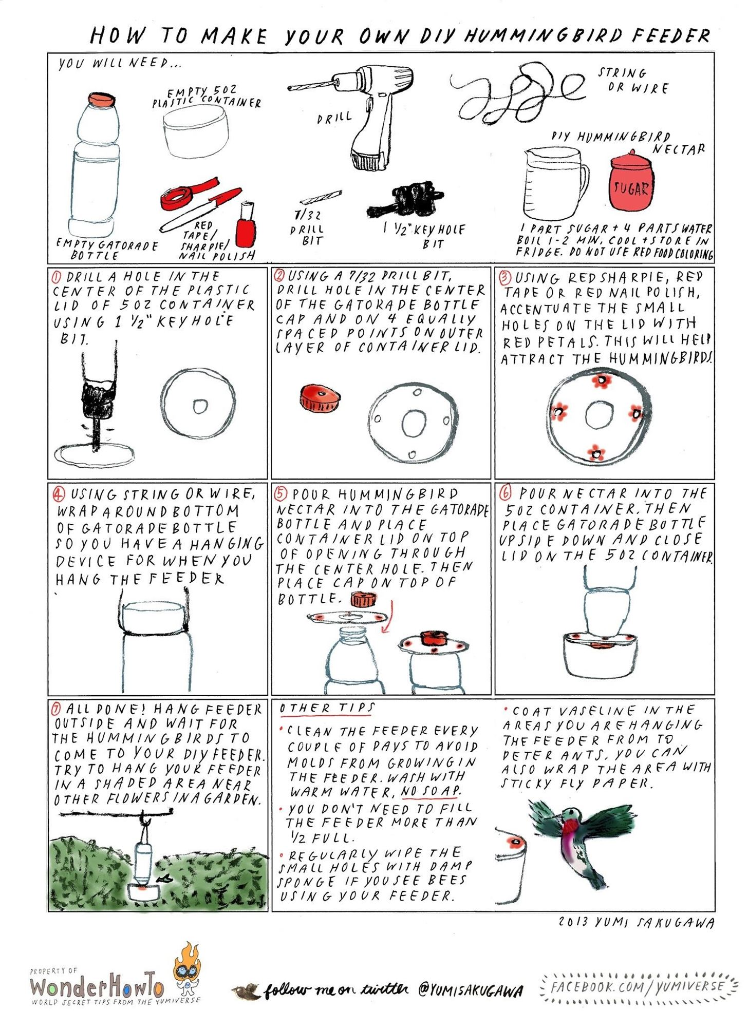 hummingbird diagram of color double pole single throw light switch wiring how to make your own diy feeder using