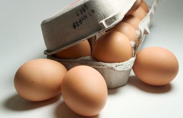 Image result for sniff egg