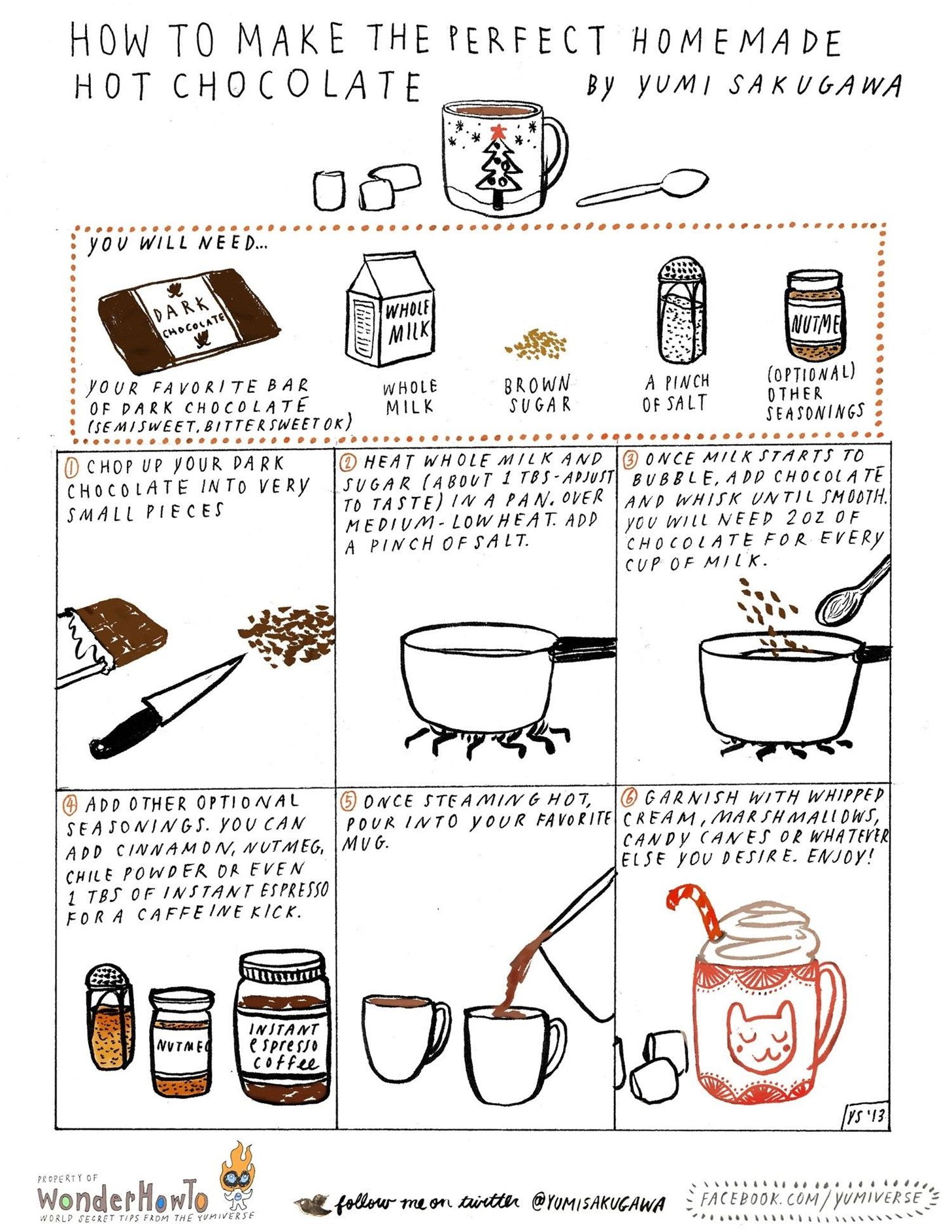 How To Make The Perfect Cup Of Hot Chocolate Using Real