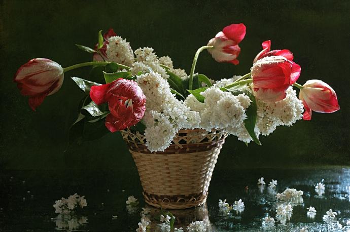 Flowers In paintings