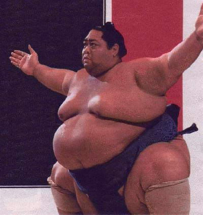 really fat sumo wrestler