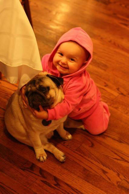 Cute Babies Wallpapers Photos Cute Baby With The Vodafone Dog Xcitefun Net