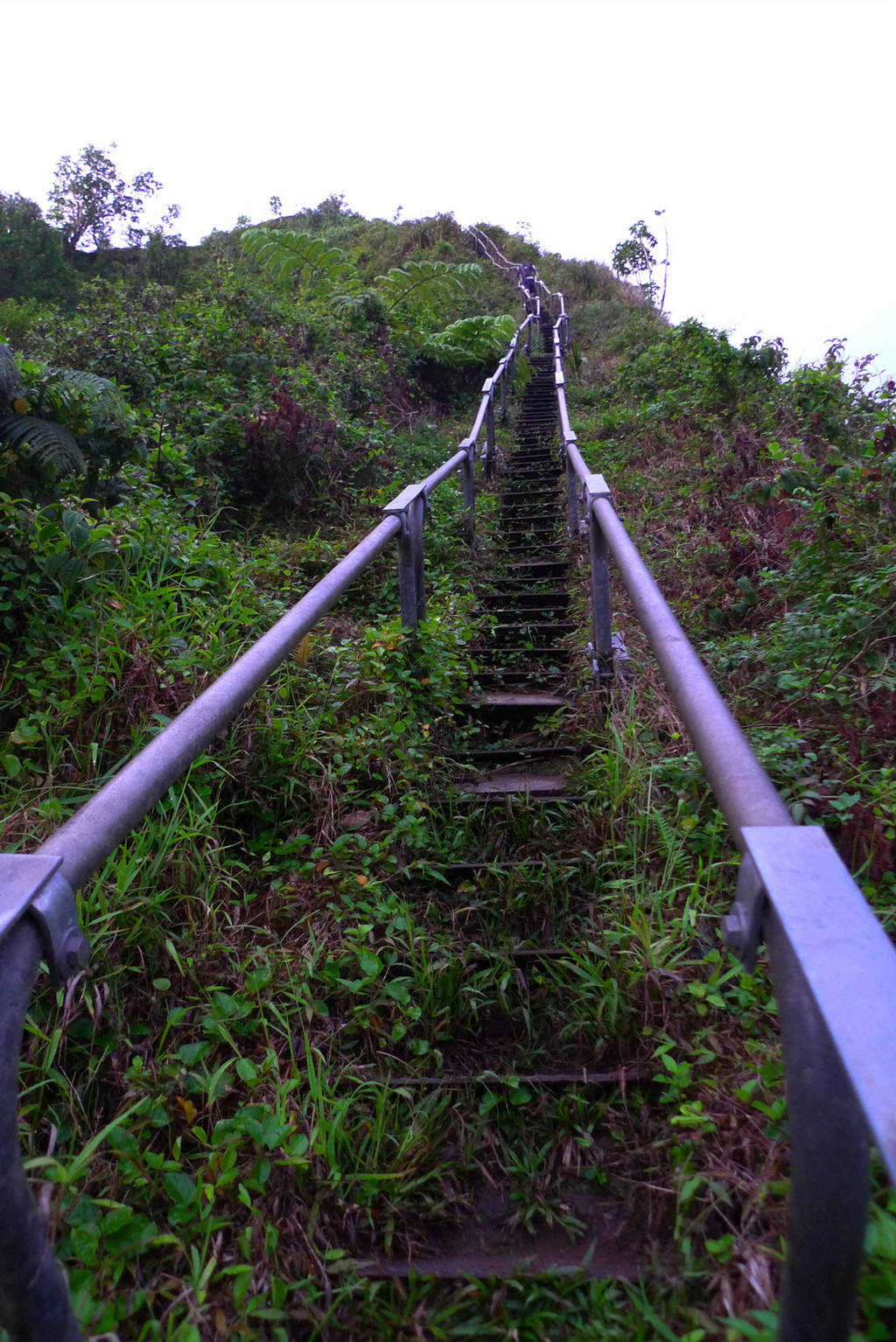 Cool Quotes Wallpapers For Desktop Haiku Stairs Steep Hiking Trail Xcitefun Net
