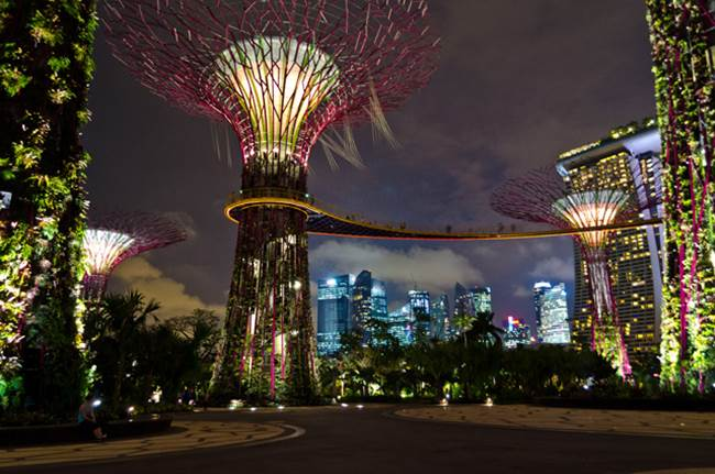 Supertrees of Singapore  Solar Powered Tree Structure