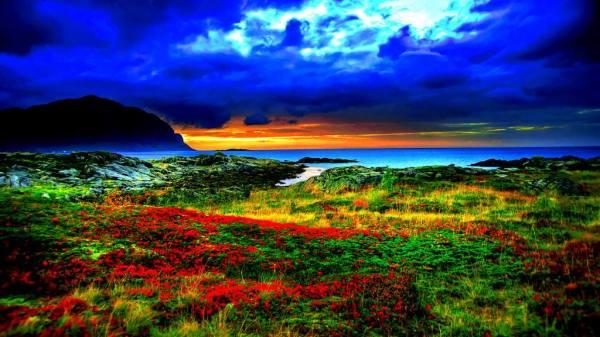 beautiful colorful nature