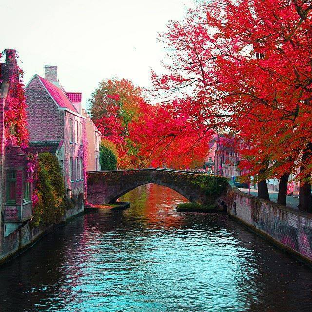 Cute Funny Babies Hd Wallpapers Colorful Brugge Belgium Spring Visit Xcitefun Net