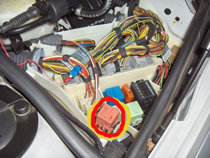 e46 m3 starter wiring diagram great white shark life cycle e36 asc fuse toyskids co bmw relay location