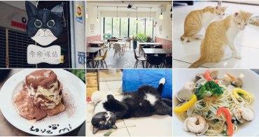 台中美術館餐廳︳樂樂咪小廚房-寵物友善餐廳兼貓咪中途之家,餐點料好實在,提供認養貓咪以及居家照顧服務!