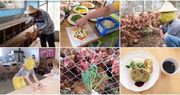 台中親子景點︳初心旅行農莊-披薩 DIY、撿雞蛋,入住民宿體驗農莊日常