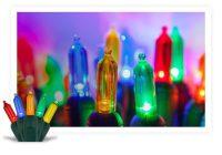 Colored String Lights - Yard Envy