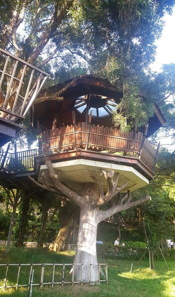 【桃園一日遊 免費景點】奧爾森林學堂 熱門打卡景點之虎頭山公園 童話樹屋 親子旅遊最佳景點