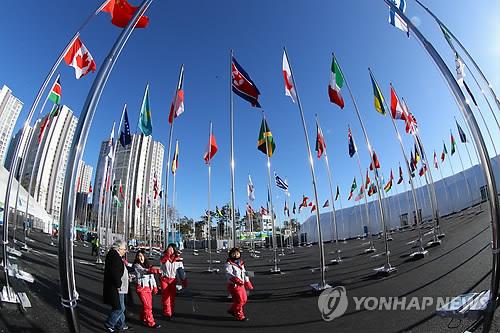 N Korean national flag at PyeongChang Olympics