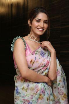 Ruhani Sharma Hot In Saree9