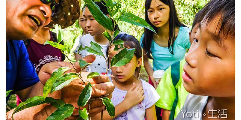 [花蓮壽豐] 青陽農場   蝴蝶生態園區, 體驗環境教育與自然保育學習, 夜觀生態導覽〈體驗邀約〉