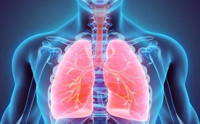 tuberculosis-treatment-prevention