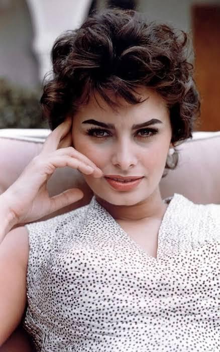 Sophia Lorraine
